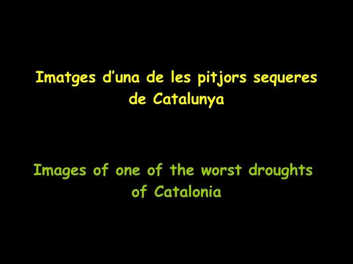 Imatges d'una de les pitjors sequeres de Catalunya Images of one of the worst droughts  of Catalonia