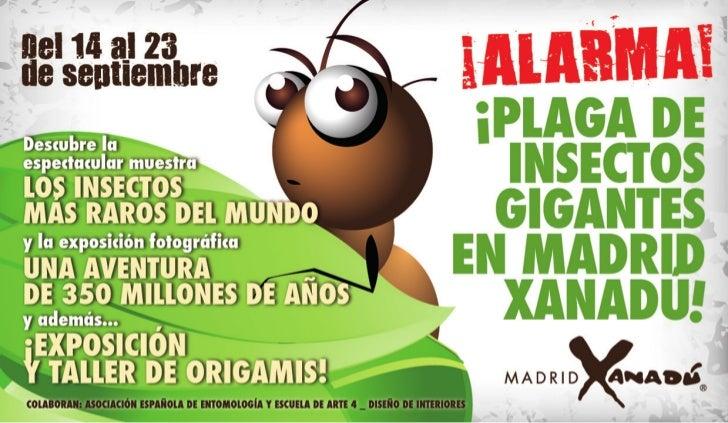 Plaga de Insectos Gigantes en Madrid Xanadú