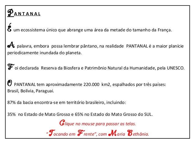 Pantanal-Mato Grosso-Brasil