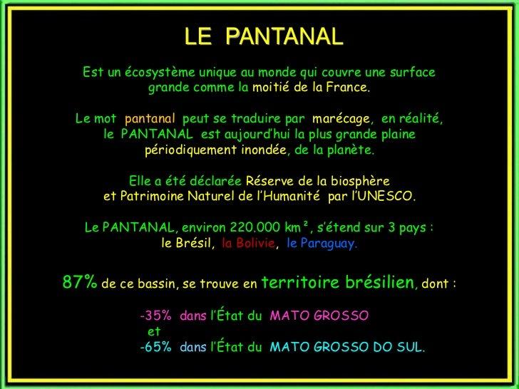 LE PANTANAL   Est un écosystème unique au monde qui couvre une surface             grande comme la moitié de la France.  L...