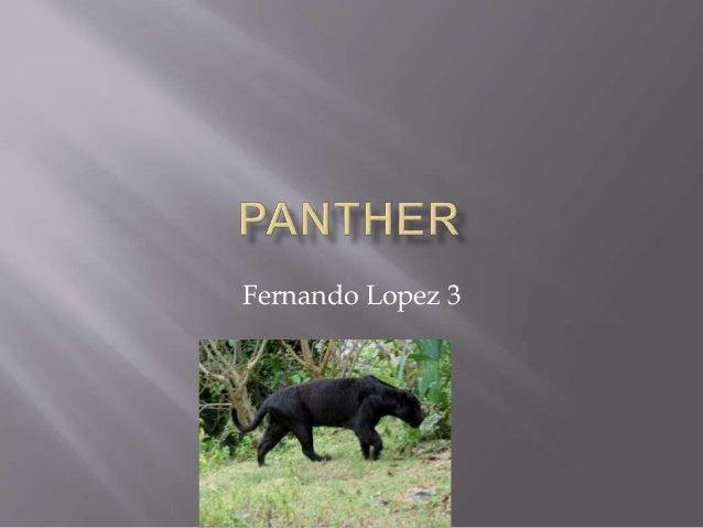 Fernando Lopez 3