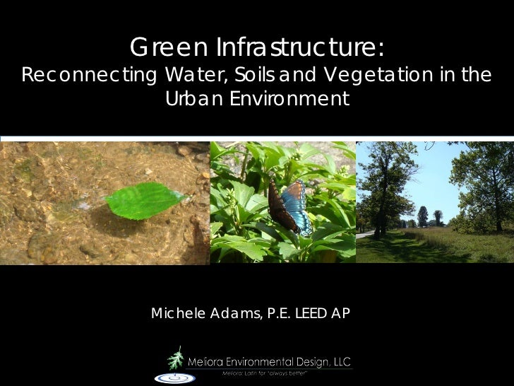 Green Infrastructure: Reconnecting Water, Soils and Vegetation in the              Urban Environment                 Miche...