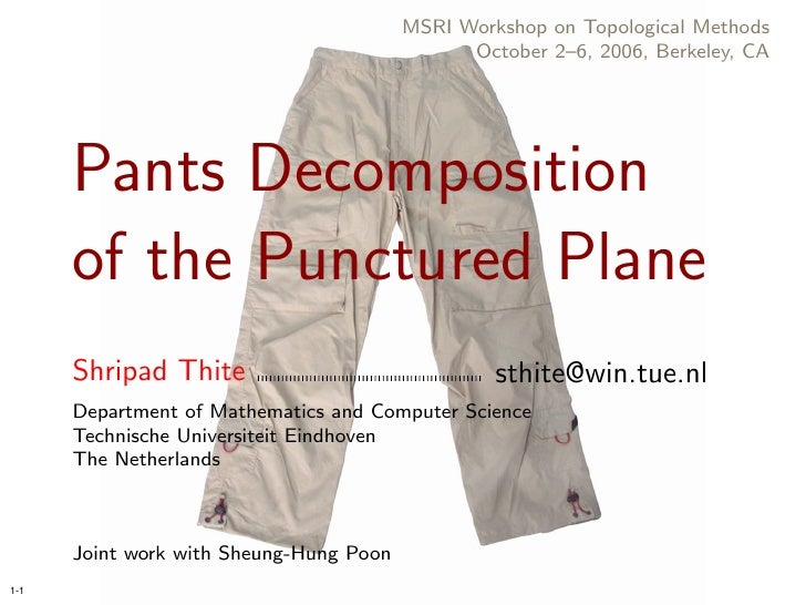 Pants Decomposition of the Punctured Plane
