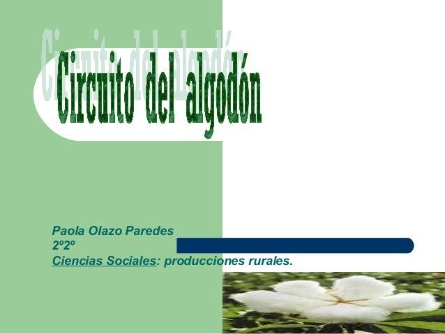 Circuito Productivo Del Algodon : Circuito del algodon