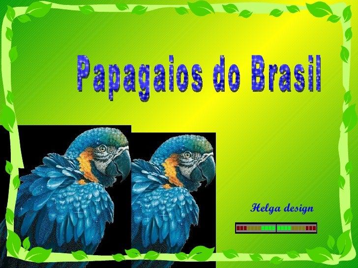 Papagaios Do Brasil