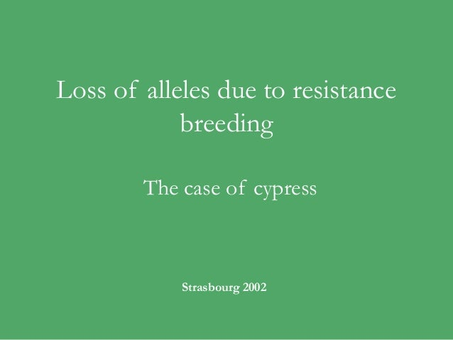 Loss of alleles due to resistance            breeding        The case of cypress            Strasbourg 2002