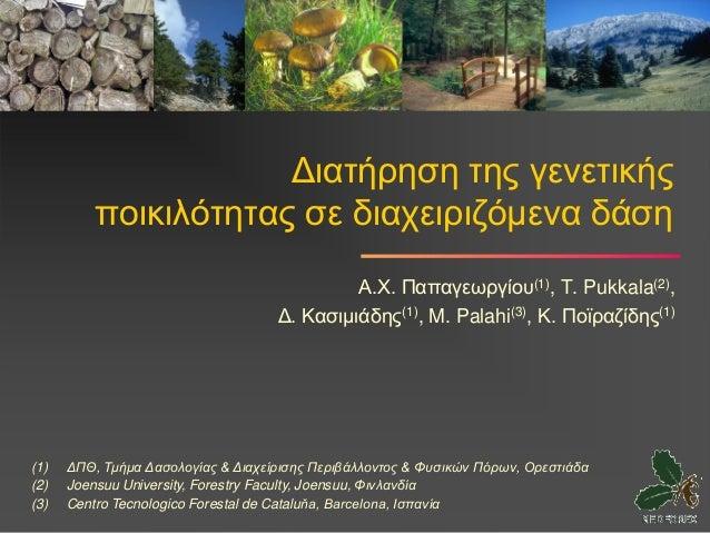 Διατήρηση της γενετικής          ποικιλότητας σε διαχειριζόμενα δάση                                             Α.Χ. Παπα...