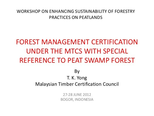 WORKSHOP ON ENHANCING SUSTAINABILITY OF FORESTRY            PRACTICES ON PEATLANDSFOREST MANAGEMENT CERTIFICATION   UNDER ...