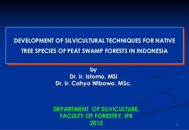 DEVELOPMENT OF SILVICULTURAL TECHNIQUES FOR NATIVE  TREE SPECIES OF PEAT SWAMP FORESTS IN INDONESIA                       ...