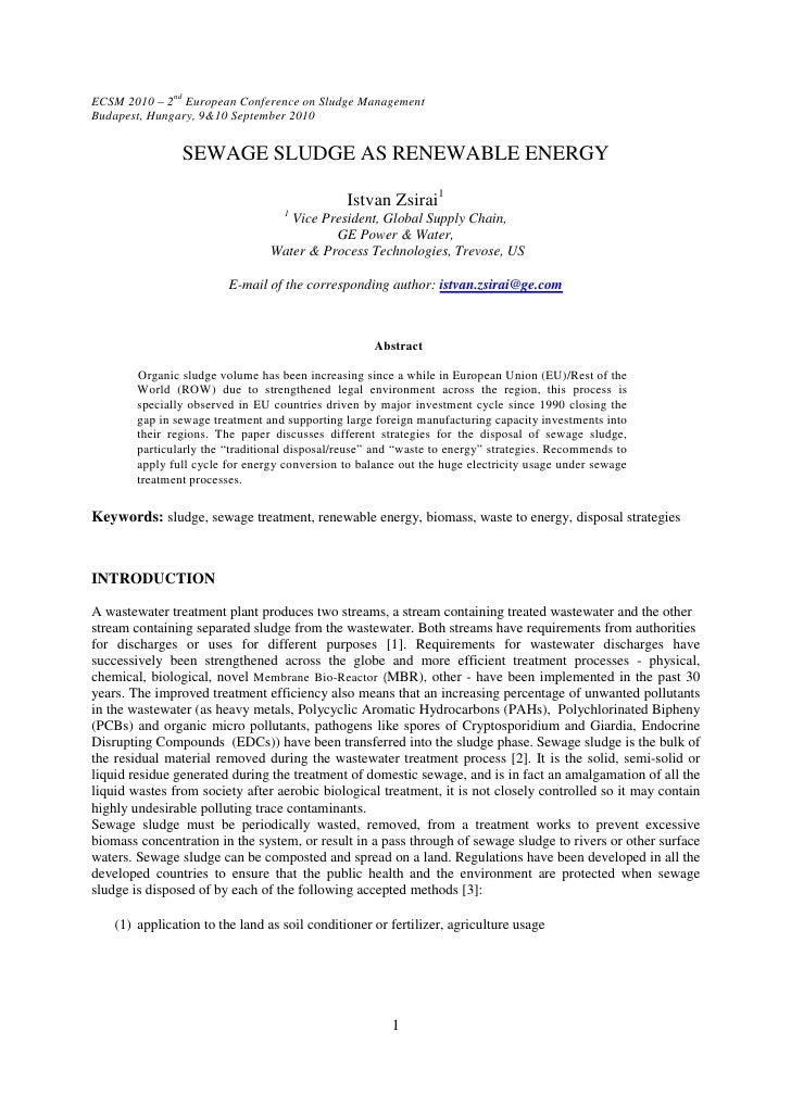 Paper ECSM 2010_IZ