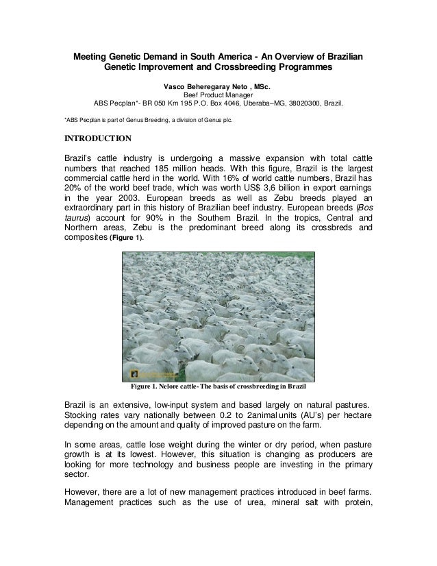 Meeting Genetic Demand in South America - An Overview of Brazilian          Genetic Improvement and Crossbreeding Programm...