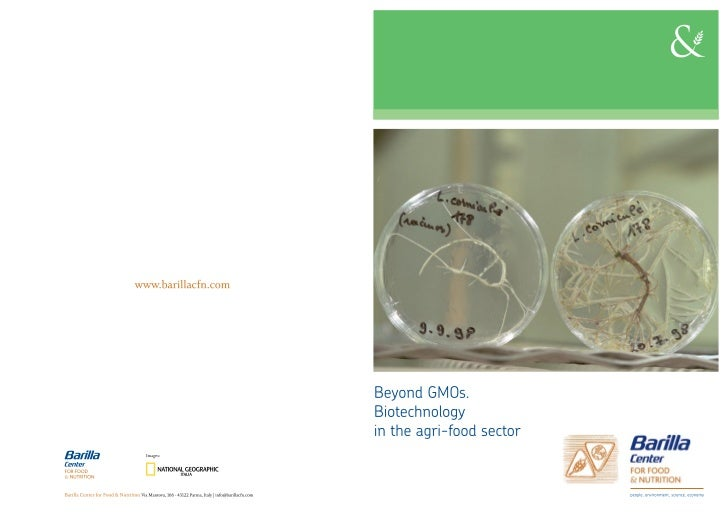 Position Paper: Biotechnology beyond GMOs