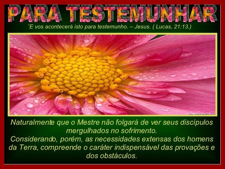 PARA TESTEMUNHAR ¨E vos acontecerá isto para testemunho. – Jesus. ( Lucas, 21:13.) Naturalmente que o Mestre não folgará d...