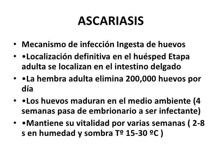 Los parásitos en el organismo de la persona la tabla