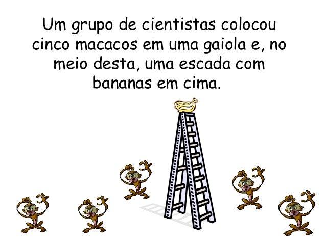 Um grupo de cientistas colocoucinco macacos em uma gaiola e, no   meio desta, uma escada com        bananas em cima.