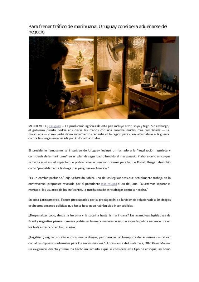 Para frenar tráfico de marihuana, Uruguay considera adueñarse delnegocioMONTEVIDEO, Uruguay — La producción agrícola de es...