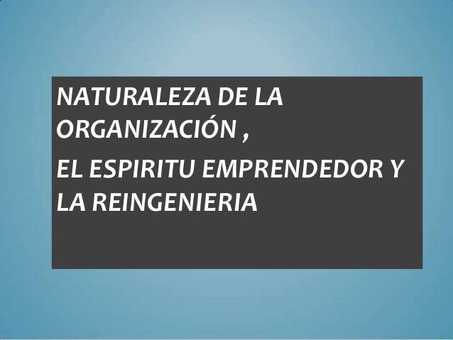 NATURALEZA DE LA ORGANIZACIÓN , EL ESPIRITU EMPRENDEDOR Y LA REINGENIERIA