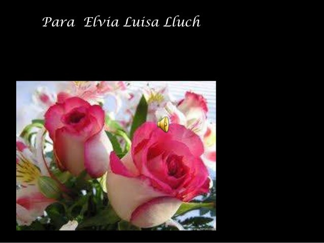 Para Elvia Luisa Lluch