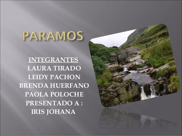 INTEGRANTES LAURA TIRADO LEIDY PACHON BRENDA HUERFANO PAOLA POLOCHE PRESENTADO A : IRIS JOHANA