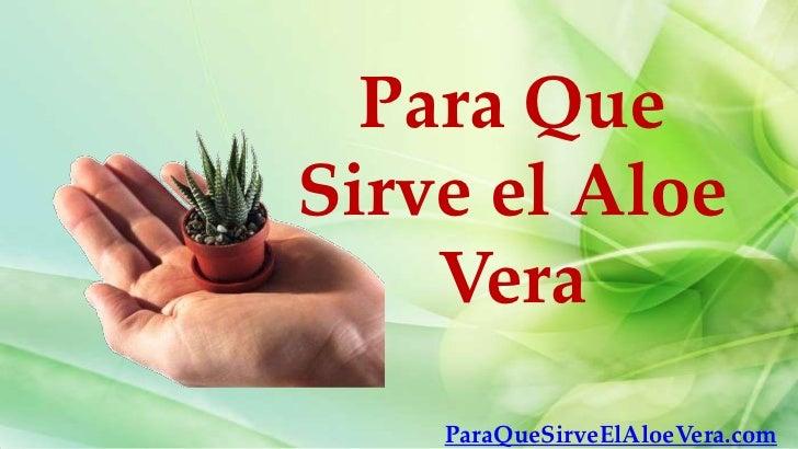 Para QueSirve el Aloe    Vera    ParaQueSirveElAloeVera.com