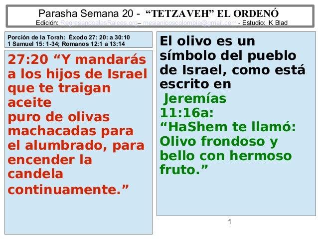 "1 Parasha Semana 20 - ""TETZAVEH"" EL ORDENÓ Edición: RegresandoalasRaices.org– mesianicoscolombia@gmail.com - Estudio: K Bl..."