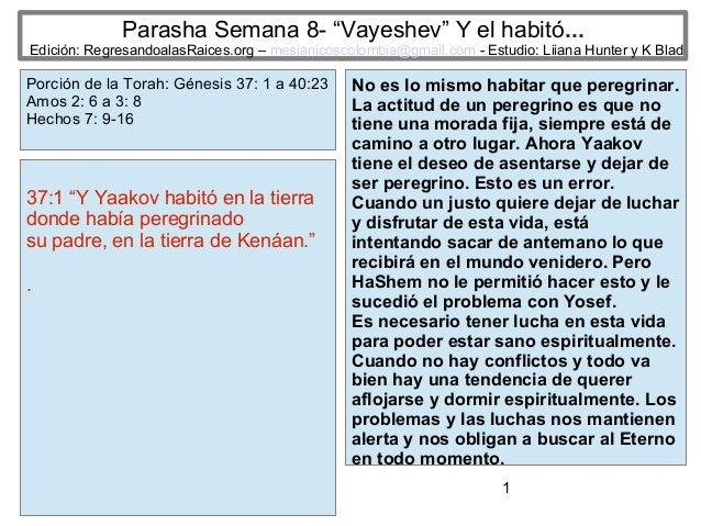 """1 Parasha Semana 8- """"Vayeshev"""" Y el habitó... Edición: RegresandoalasRaices.org – mesianicoscolombia@gmail.com - Estudio: ..."""