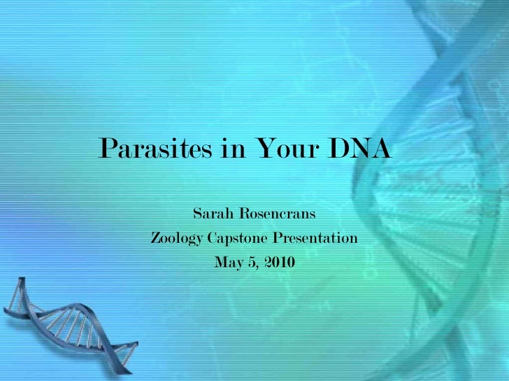 Parasites in Your DNA         Sarah Rosencrans   Zoology Capstone Presentation            May 5, 2010