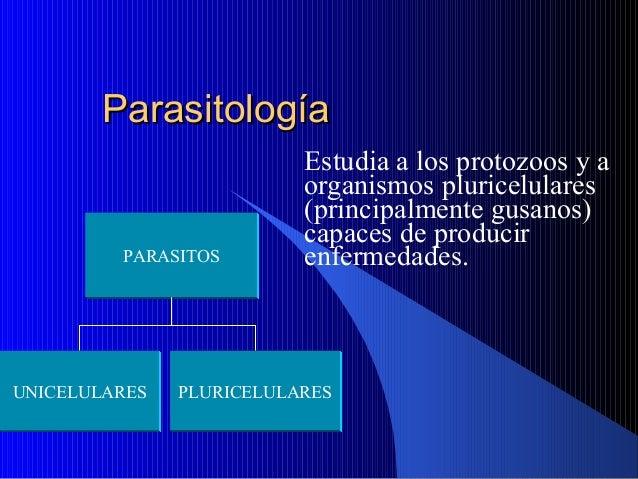 ParasitologíaParasitología Estudia a los protozoos y a organismos pluricelulares (principalmente gusanos) capaces de produ...