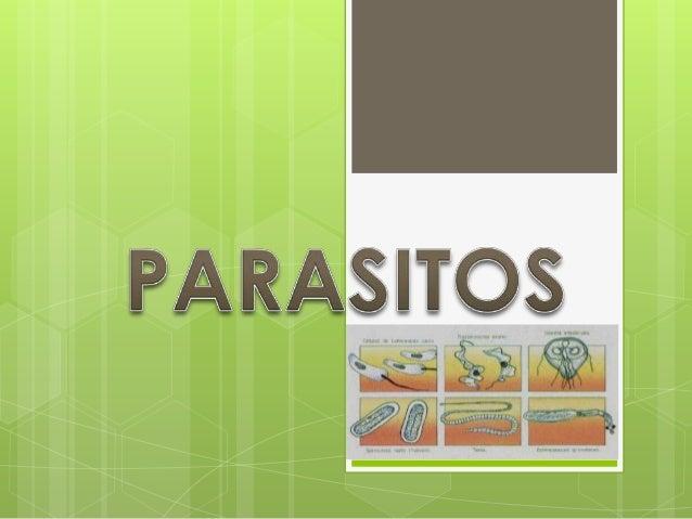 Parasitos 7 expo (1)