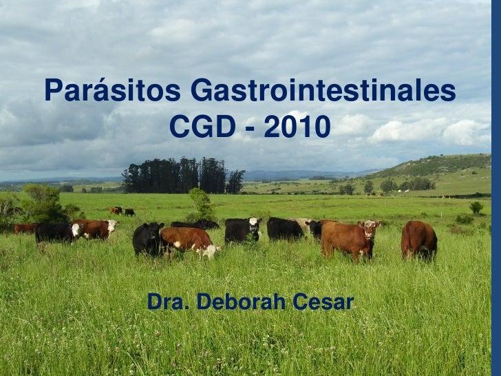 Parasitos gastrointestinales   cgd 2010