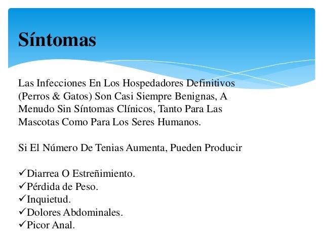Los síntomas de las lombrices el picor