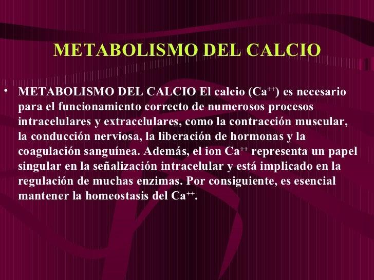 METABOLISMO DEL CALCIO <ul><li>METABOLISMO DEL CALCIO   El calcio (Ca ++ ) es necesario para el funcionamiento correcto de...