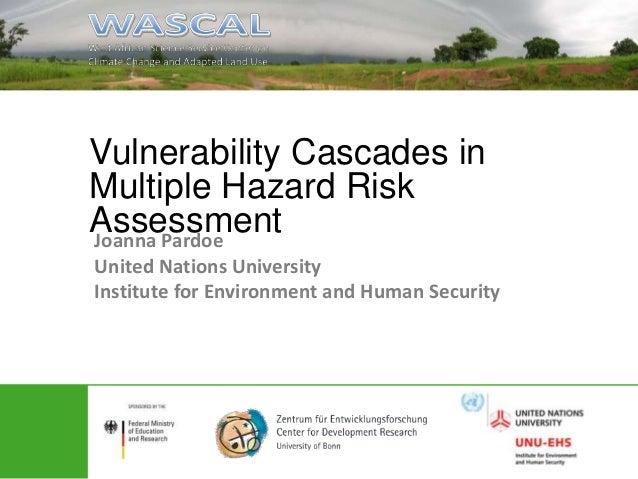 Pardoe_Vulnerability cascades3