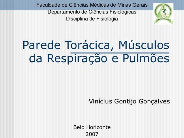 Parede Torácica, Músculos da Respiração e Pulmões Vinícius Gontijo Gonçalves Faculdade de Ciências Médicas de Minas Gerais...