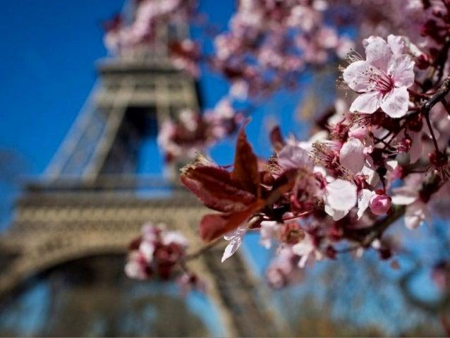 Parisian Spring