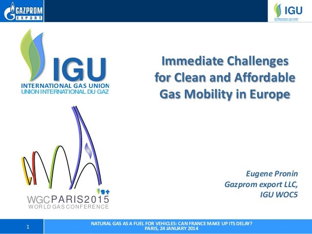 Immediate Challenges for Clean and Affordable Gas Mobility in Europe - Paris, 24 January 2014