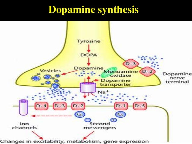 parkinsons disease and tourettes syndrome essay Health term papers (paper 3618) on tourettes syndrome: tourettes syndrome is an inherited, neurological disorder characterized by tics tics are involuntary, rapid.
