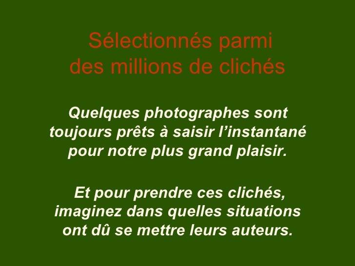 Sélectionnés parmi des millions de clichés Quelques photographes sont toujours prêts à saisir l'instantané pour notre plus...