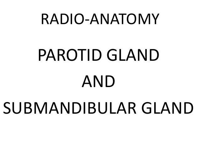 RADIO-ANATOMY  PAROTID GLAND AND SUBMANDIBULAR GLAND