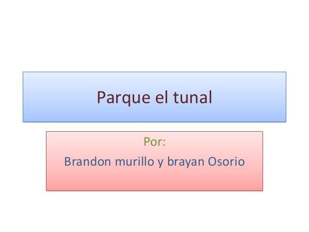 Parque el tunal Por: Brandon murillo y brayan Osorio