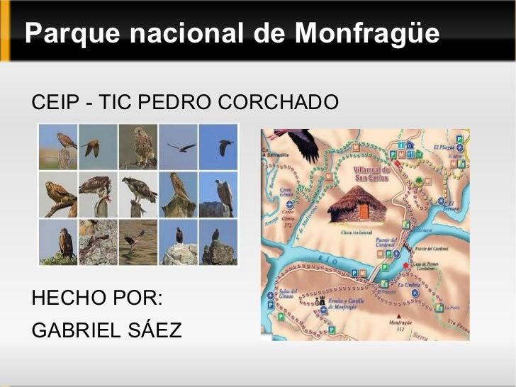 Parque nacional de Monfragüe <ul><li>CEIP - TIC PEDRO CORCHADO </li></ul>HECHO POR: GABRIEL SÁEZ