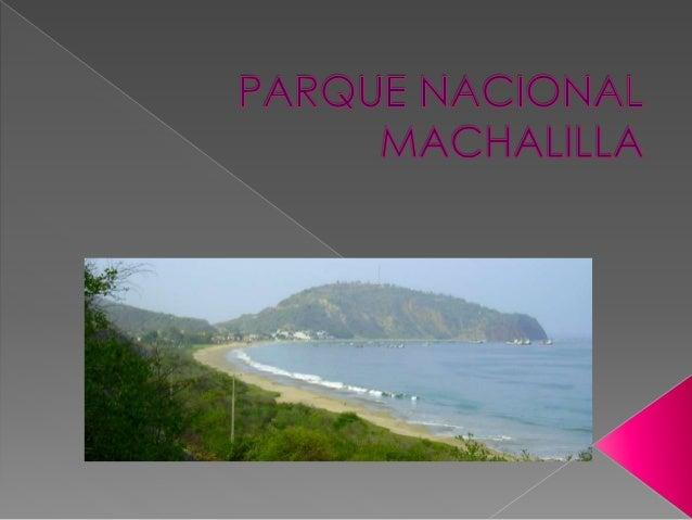  El Parque Nacional Machalilla forma parte del Sistema Nacional de Áreas Protegidas del Ecuador, ubicado en la costa sur ...