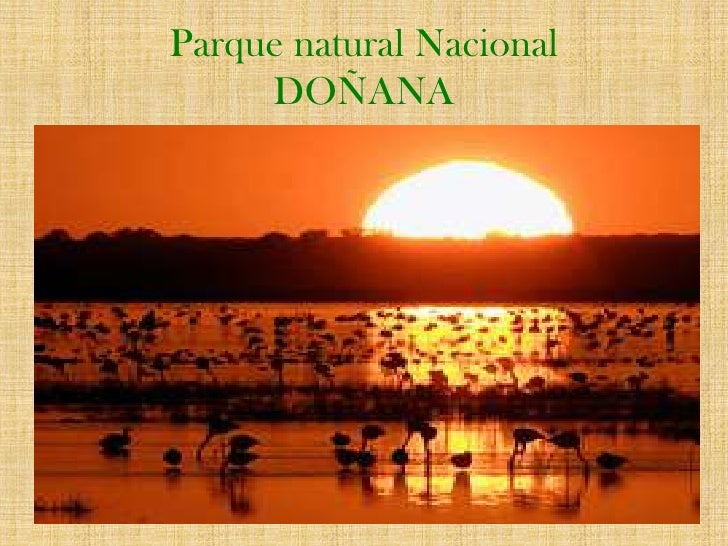 Parque natural NacionalDOÑANA<br />