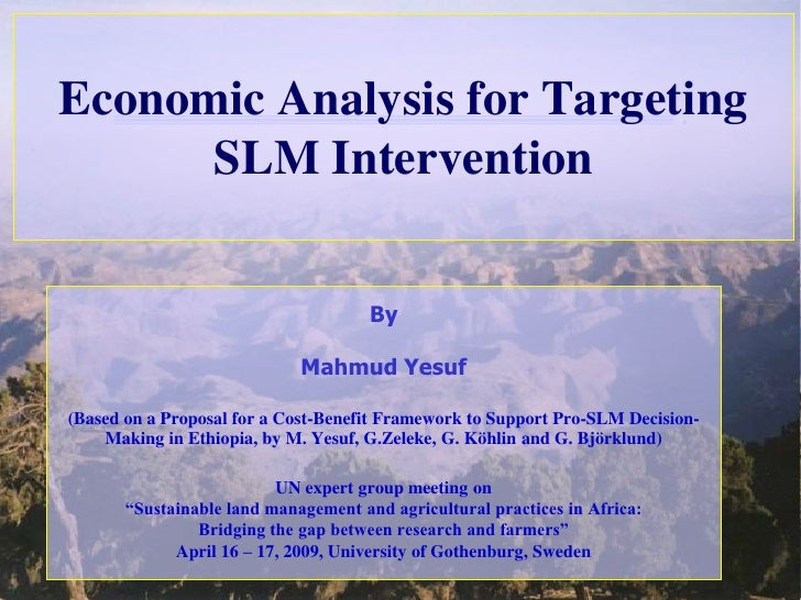 Economic Analysis for Targeting       SLM Intervention                                         By                         ...