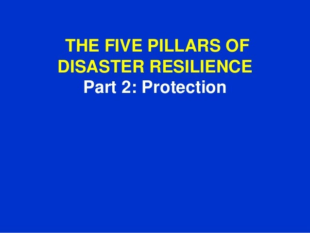 Part 2   Protection: The Five Pillars Of  Disaster Resilience