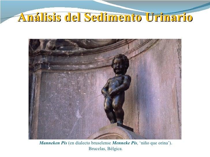 Análisis del Sedimento Urinario   Manneken Pis(endialectobruselenseMenneke Pis,'niñoqueorina').                    ...