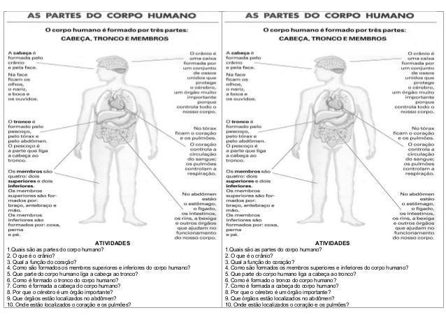ATIVIDADES1.Quais são as partes do corpo humano?2. O que é o crânio?3. Qual a função do coração?4. Como são formados os me...