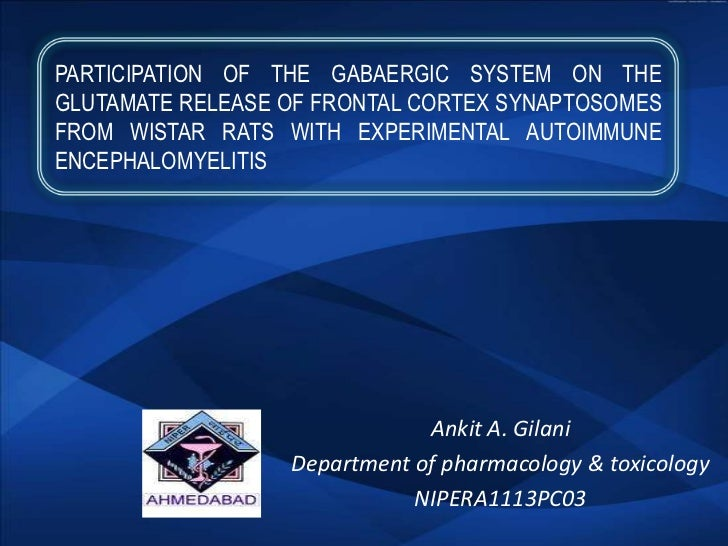 PARTICIPATION OF THE GABAERGIC SYSTEM ON THEGLUTAMATE RELEASE OF FRONTAL CORTEX SYNAPTOSOMESFROM WISTAR RATS WITH EXPERIME...