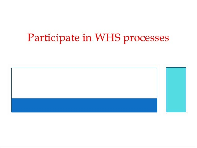 Participate in WHS processes