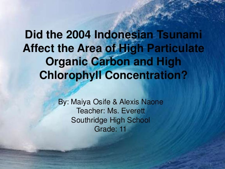 Did the 2004 Indonesian TsunamiAffect the Area of High Particulate    Organic Carbon and High   Chlorophyll Concentration?...
